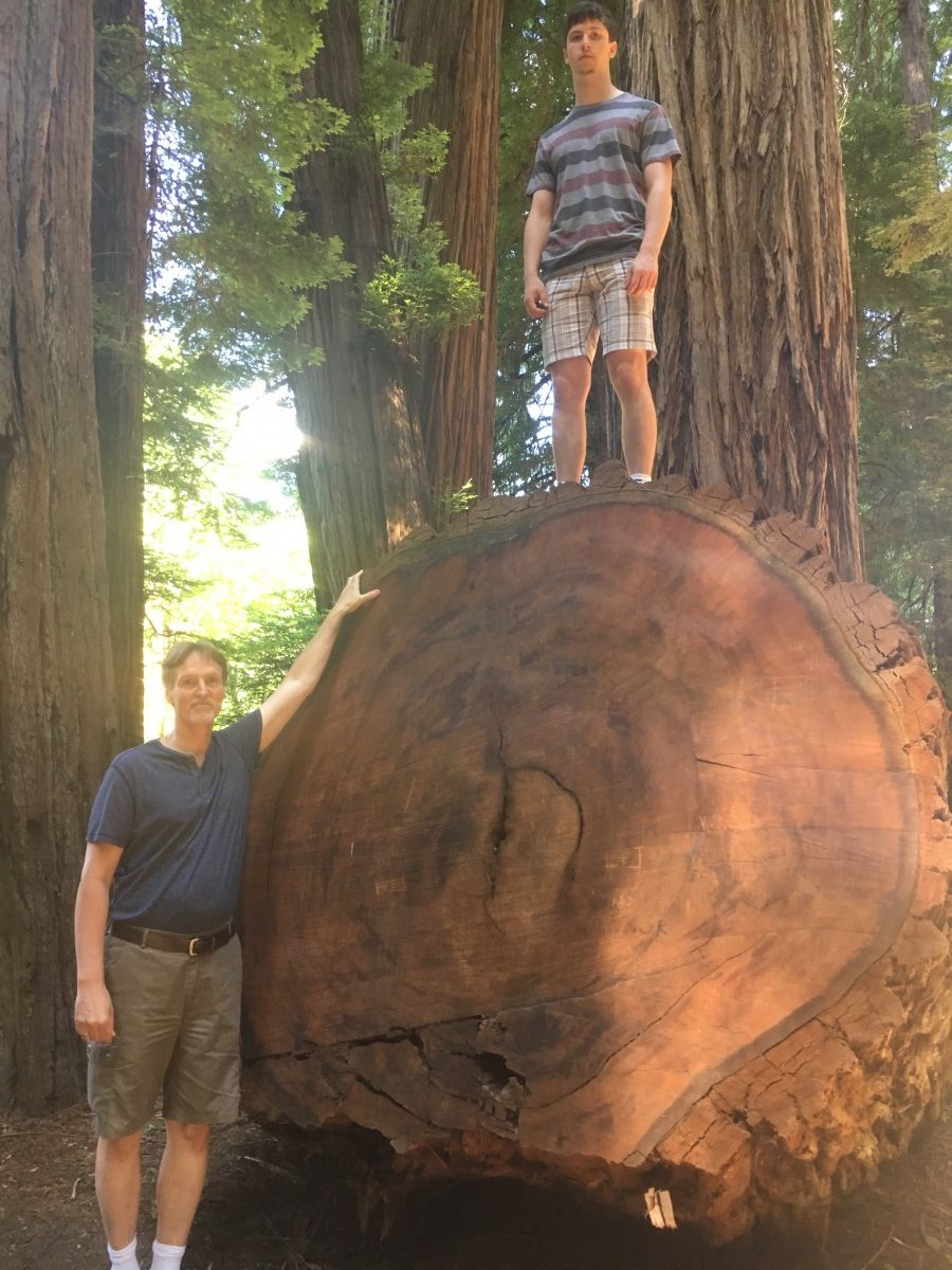 Pär Jönsson and his son in the Jededia Smith's Redwood State Park