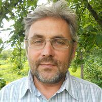 Profile picture of Levente Vitos