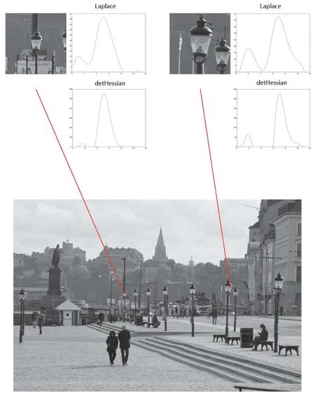 Figure 12 from Lindeberg (2013) 'Invariance of visual operations at the level of receptive fields',