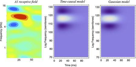 Figure 19 from Lindeberg and Friberg (2015) 'Idealized computational models of auditory receptive fi