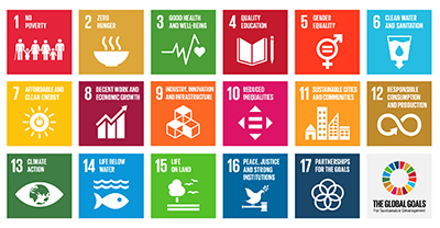 Sustainable Development Goals.