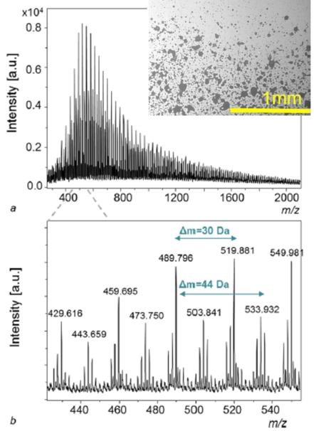 Mass spectrum of arc-induced ablation products of POM